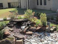 New water garden